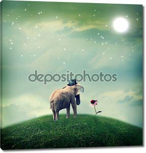 Слон с шляпой, глядя на цветок