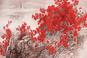 Цветущий куст на скале