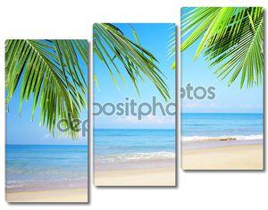 Море пальмы