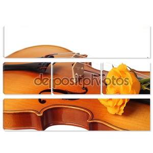 Очаровательная роза на музыкальном инструменте