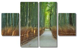Путь через лес бамбука Арасияма Киото, Япония