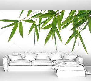 Бамбуковые листья