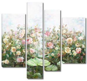 Садовые розы в зеленой гамме