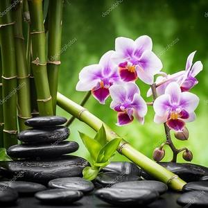 Камни дзэн и орхидея с бамбуком