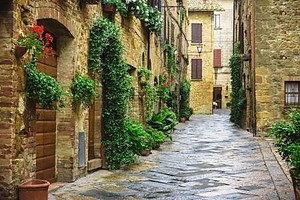 Цветочные улицы на дождливый весенний день в небольшой деревне, волшебный