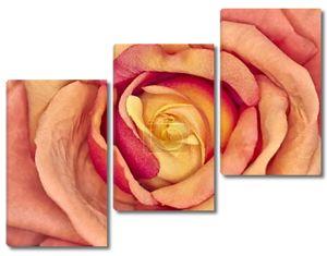 поддельные текстильная Роза крупным планом