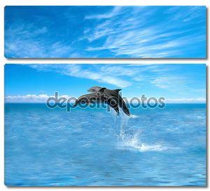 Пара дельфинов резвятся