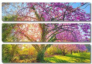 Разноцветное дерево