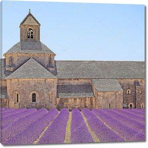 senanque аббатство цветущей лаванды цветы деталь. горд, Люберон