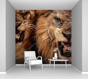 Дикие рычащие львы