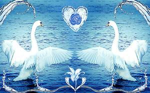 Лебеди с раскрытыми крыльями
