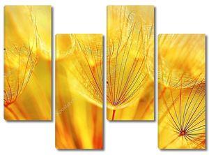 Цветочный фон одуванчика