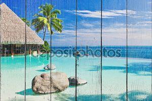 Пейзажный бассейн с пальмами, с видом на океан