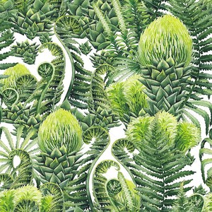 Watercolor prehistoric plants