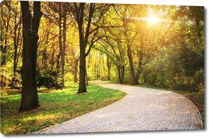 Дорога в осень парк. Природа состав