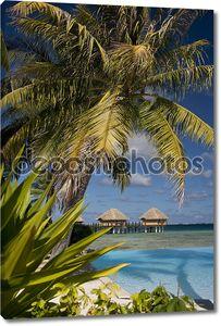 Тропический остров рай - Французская Полинезия