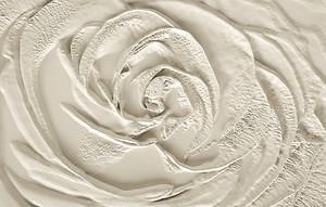 Роза выполненная на штукатурке
