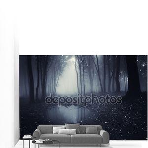 Озеро в темный лес в тумане