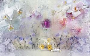 Замерзшие орхидеи