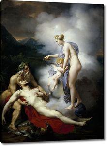 Блондель Мэрри Жозеф. Венера исцеляет Энея