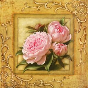 Стилизованное в рамке, Розовые пионы