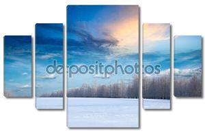 Лес и поле покрытые снегом