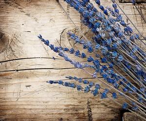 Лаванда древесины фоне. С копией пространства