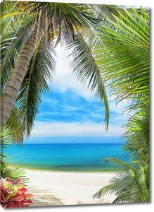 Пальма и пальмовые листья