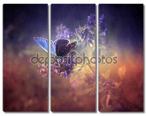 Бабочка на винтажном фоне
