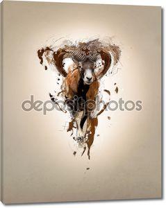 mouflon, абстрактное понятие животных