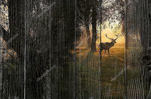 Красивые олени в лесу