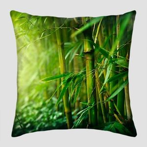 Бамбук стебли