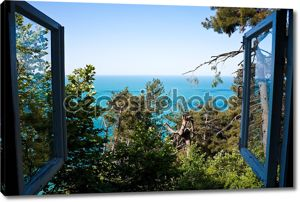 пейзаж окна