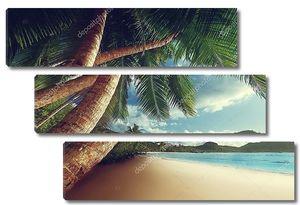 Тропическое побережье