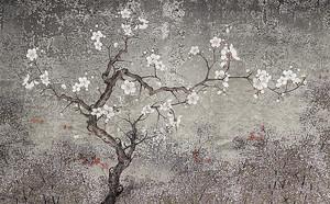 Дерево сакуры на старой стене