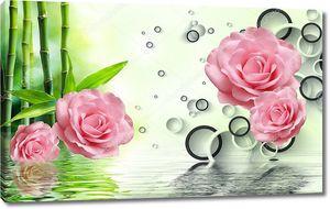Черно-белые кольца,  большие розовые розы, отражение в воде