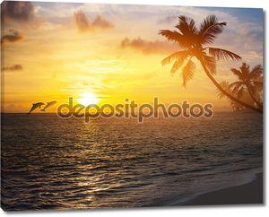 Искусство красивый восход солнца над тропический пляж