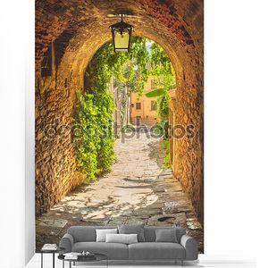 старые улицы растительности средневековый тосканский город.