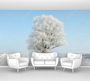 Одинокое зимнее дерево утром