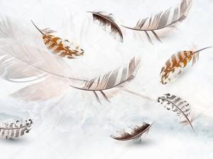 Несколько серых и бежевых перьев