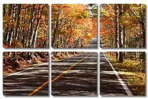 Живописная дорога осенью