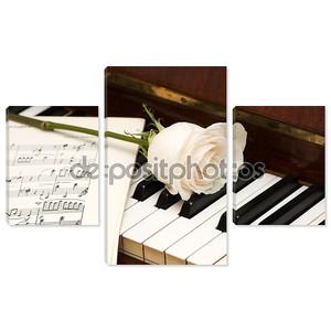 Белая Роза над нотные листы и фортепиано