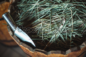 Специи и травы. Египетский рынок специй