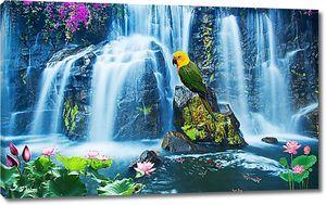 Попугай у водопада
