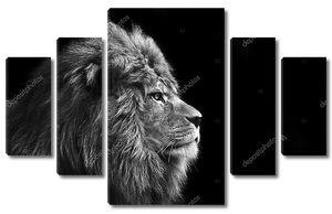 Потрясающий лев