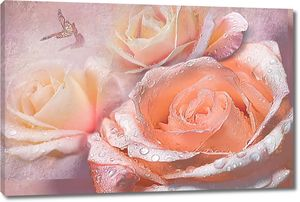Оранжевые розы в росе