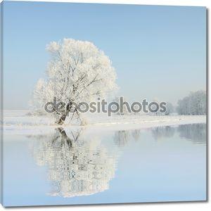 Зимний пейзаж матового дерева на рассвете