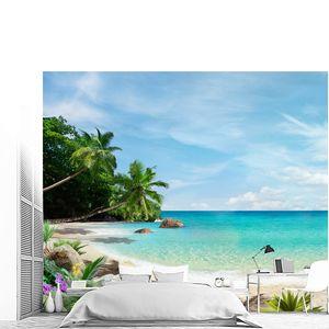 Пляж, пальмы и цветы