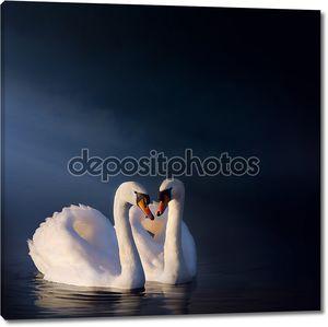 Искусство романтический Лебединая пара