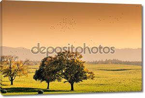 Осенняя Сцена возле гор